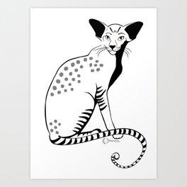 Kakan the cat Art Print