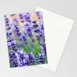 Violet lavender Stationery Cards