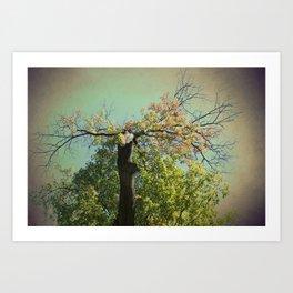 Green Tree of Mysticism, Woodland, Fantasy Art Print