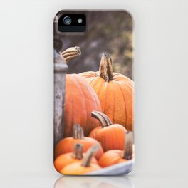 pumpkins + milk cans iPhone Case
