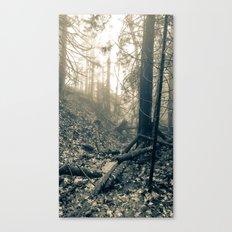 Forest Fog Canvas Print