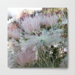 Desert flowers Metal Print