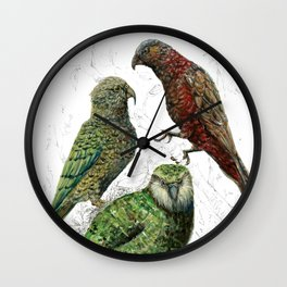 Three native parrots of New Zealand Wall Clock