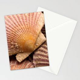 Scallops 3 Stationery Cards
