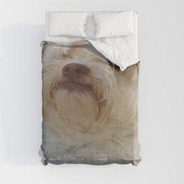 Grumpy Terrier Dog Face Comforters