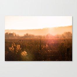 Low-Lying Canvas Print