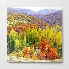 colored3 Metal Print