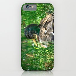Into the Wilderness - Colorful iPhone Case