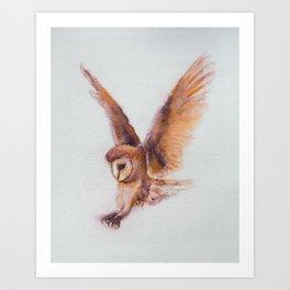 Coruja the owl Art Print