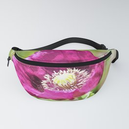 Purple Poppy by Reay of Light Photography Fanny Pack