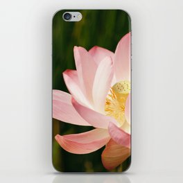 Radiant Lotus iPhone Skin