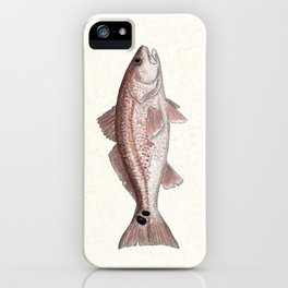 """Redfish"" by Amber Marine - (Red Drum) Sciaenops ocellatus ~Watercolor Illustration,(Copyright 2013) iPhone Case"