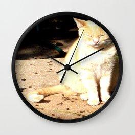 The Sunbathing Cat Wall Clock