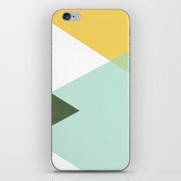 Geometrics - citrus & concrete iPhone Skin