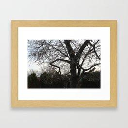 CreepyTree Framed Art Print