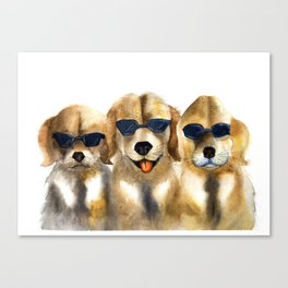 Yellow dogs  in funny glasses Canvas Print