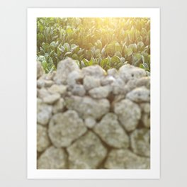 Sunset over a Mediterranean field and a dry stone wall Photo for Interior Design, south Italy, Art Print