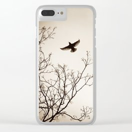 Bird Flying Tree Photography, Brown Nature Branches, Birds Fly Trees Clear iPhone Case