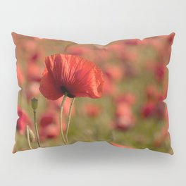 Poppy poppies summer field Pillow Sham