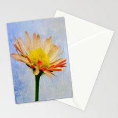 Daisy Texture Stationery Cards