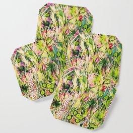 Mary-Mary Coaster