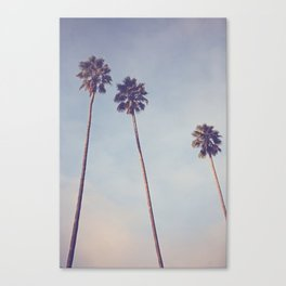 Sunshine & Warmth Canvas Print