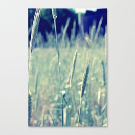 Meadow & Weed Canvas Print