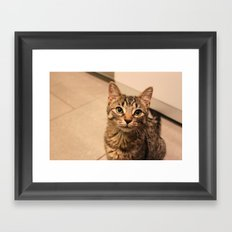 Millie (100% of proceeds donated to charity) Framed Art Print