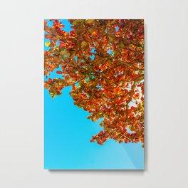 Red Leaves in Blue Metal Print