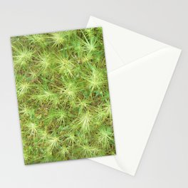 Young, green plants (grass) growing outdoor Stationery Cards