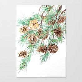pine cones watercolor Canvas Print