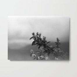 a flower for you Metal Print