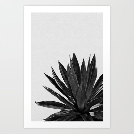 Agave Cactus Black & White by paperpixelprints