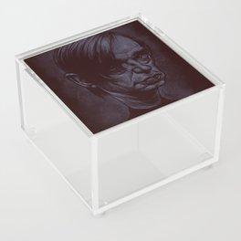 Blixa Bargeld Acrylic Box