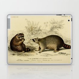Naturalist Raccoons Laptop & iPad Skin