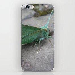 LARGE EMERALD MOTH iPhone Skin