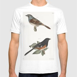 95 The Golden-crested Kinglet (Regulus satrapa) 96 The Winter Wren (Troglodytes hyemalis) 97 The Hou T-shirt