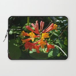 Orange Flowers of Woodbine HoneySuckle Laptop Sleeve