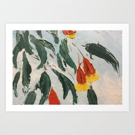 fuschia gum in flower Art Print