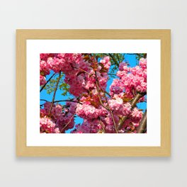 Prague Spring #2 Framed Art Print
