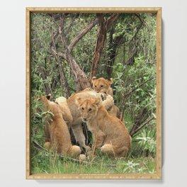 Masai Mara Lion Cubs Serving Tray
