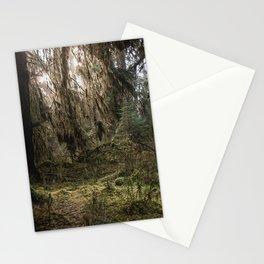 Rainforest Adventure Stationery Cards