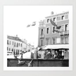 Padova vola Art Print