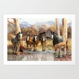 High Country Hideaway Art Print
