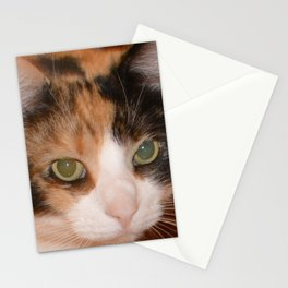 Cat Eyes, Green Eyes, Bedroom Eyes Stationery Cards