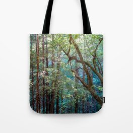 Lost in the Redwoods Tote Bag