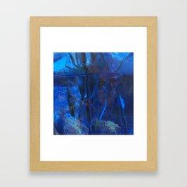 See through the fog Framed Art Print