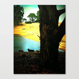Western Australian country scene Canvas Print