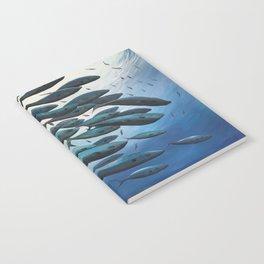 School of Fish Notebook