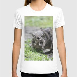 Lovely Guinea Pig III T-shirt